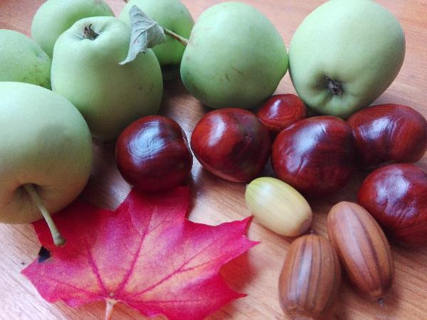 Höstens mat - Nyttiga tips