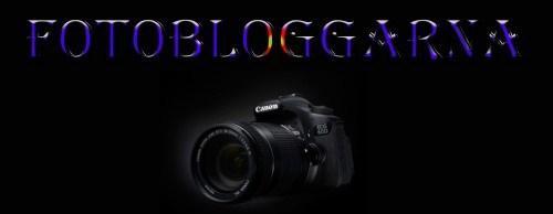 Fotobloggarna